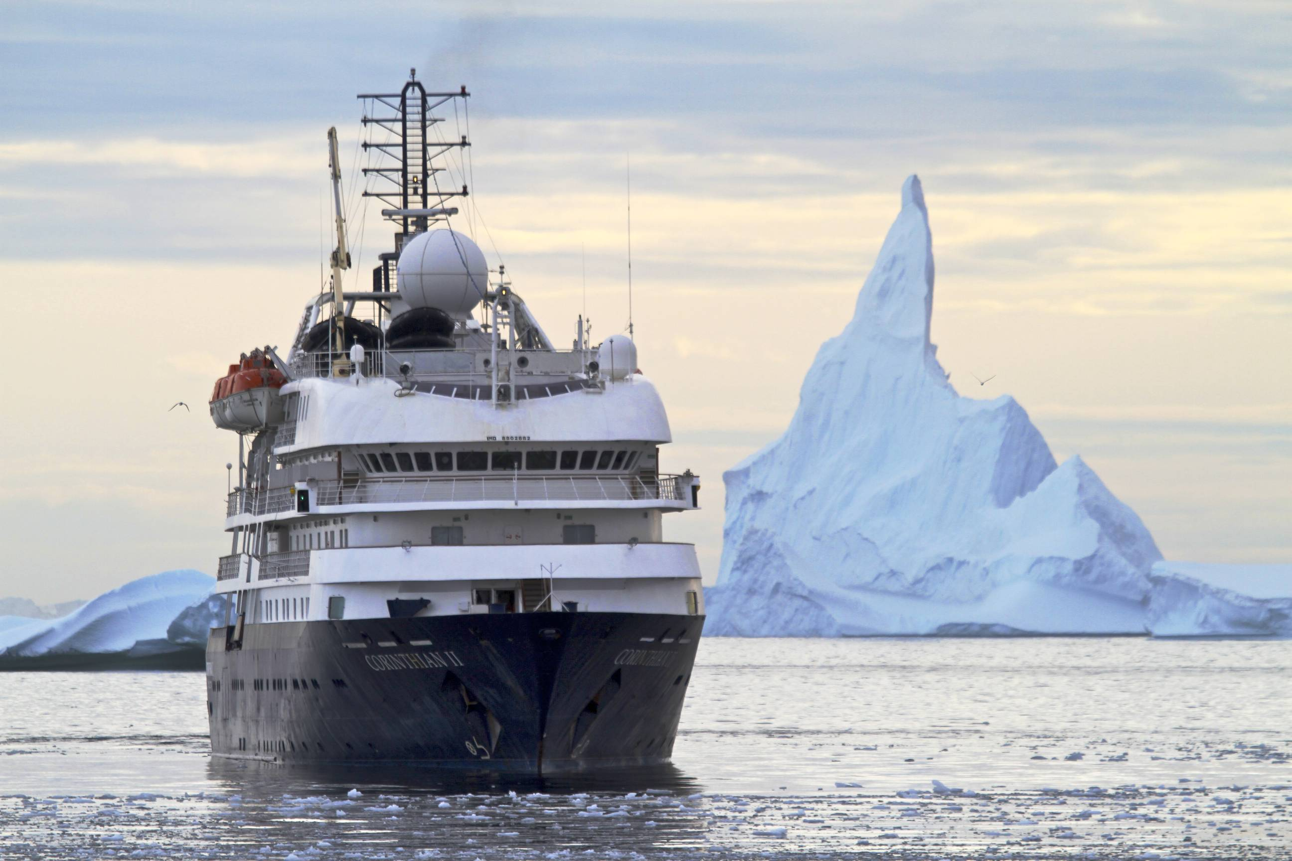 Deciding on the best cruise to visit antarctica for Best way to travel to antarctica