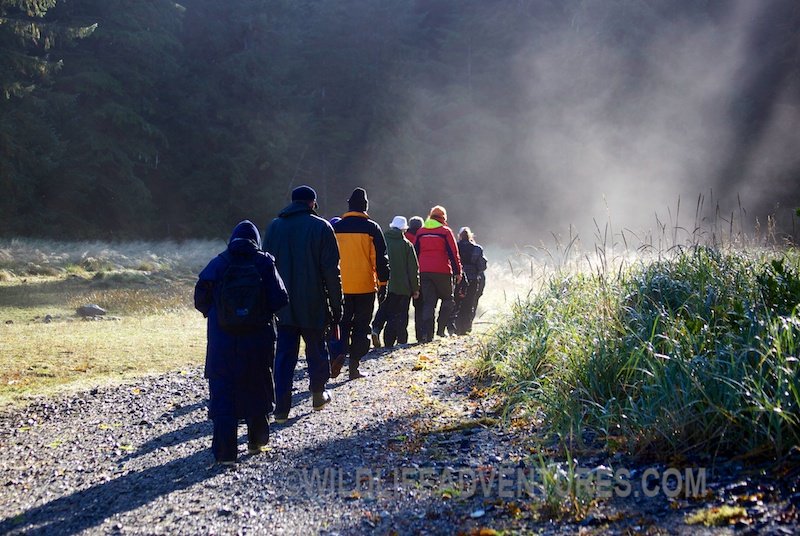 Hikers in the Great Bear Rainforest