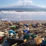 Marine debris: it's bigger (and smaller) than you think